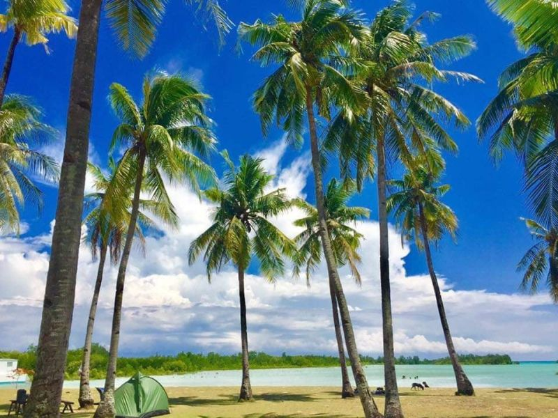 SunStar Bacolod file